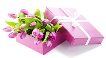 Florisbella é a primeira franquia de flores do Brasil